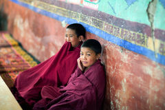 Young Tibetan Buddhist monk praying in Thiksey gompa (Buddhist m Stock Photos