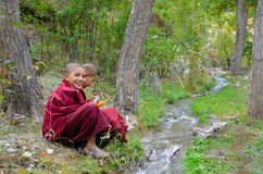 Young tibetan Monks royalty free stock images