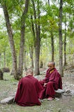 Young tibetan Monks stock images