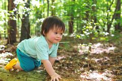 Toddler boy playing in the forest. Young toddler boy playing in the forest Stock Images