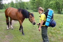 Young tourist with a backpack acquainted with the horse and the. Horse gives a flower Royalty Free Stock Image