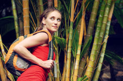 Young tourist with backpack walking in tropical forest Royalty Free Stock Images