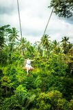 Young tourist woman swinging on the cliff in the jungle rainforest of a tropical Bali island. stock image