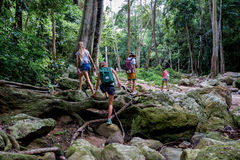 Young tourists are moving across the creek on the rocks in the jungle Stock Image