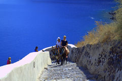 Young tourists riding donkeys on Greek island Royalty Free Stock Image