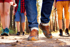Young tourists in the woods Stock Images