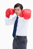 Young tradesman with boxing gloves striking Stock Photo
