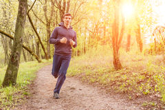 Young trail runner man jogging in the morning park Royalty Free Stock Image