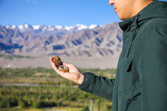 Young traveler looking at compass in Himalaya mountain view background Royalty Free Stock Photo