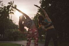 Young two female friend workout before fitness training session at the park royalty free stock photo
