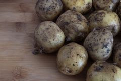 Young untreated potatoes close-up on a wooden backgroundb autumn harvest stock photos