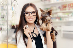 Young Veterinarian Female Doctor with Cute Dog Stock Photography