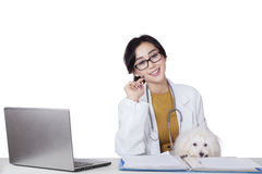 Young veterinarian smiling at camera Royalty Free Stock Photos
