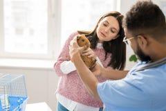 Bringing pet to doctor stock photos