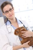 Young veterinary with cute patient Stock Photography