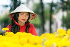 Young Vietnamese woman in a traditional hat Stock Photography