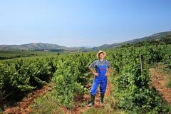 Young vintner posing at vineyard. A young vintner posing at vineyard Stock Photos