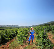 Young vintner standing at vineyard Stock Photography