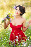 Young voluptuous brunette holding a wild flowers bouquet in a sunny day. Portrait of beautiful woman with low-cut red dress posing. Outdoor shot. Provocative Royalty Free Stock Image