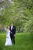 Young wedding couple Royalty Free Stock Images