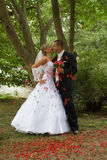 Young wedding couple. Kissing in a park Royalty Free Stock Images