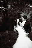 Young wedding couple. Black and white portrait Royalty Free Stock Photography