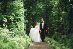 Young wedding couple, bride and groom posing on a railway track Royalty Free Stock Photos