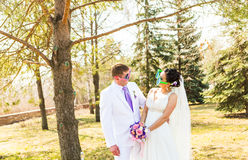 Young wedding couple  in funny big glasses Royalty Free Stock Images