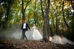 Young wedding couple goes on a picturesque forest Royalty Free Stock Image