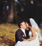 Young wedding couple  kissing Stock Images