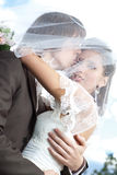 Young wedding couple portrait Stock Photos
