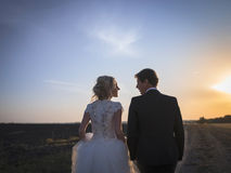 Young wedding couple talking on the field at sunset Stock Photos