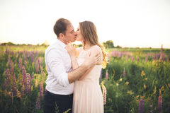 Young wedding couple walking on field with flowers Stock Images