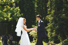 Young wedding couple walking in park. Royalty Free Stock Image