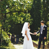 Young wedding couple walking in park. Royalty Free Stock Photos