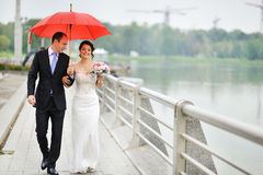 Young wedding couple walking at their wedding day. Young happy wedding couple walking at their wedding day Royalty Free Stock Image