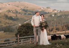 Newly married wedding couple hugging on nature. Young wedding romantic couple of bride in white dress and bridegroom in suit on pasture of sheeps. Wedding walk royalty free stock photography