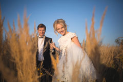 Young wedding smartly dressed couple goes on a field with high e Stock Photos