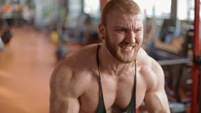 Young white bodybuilder training biceps in the gym stock video