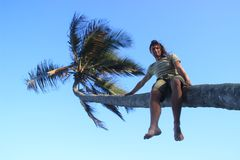 A young white man climbed onto a palm tree and sits on a trunk amid a bright blue sky and palm stock images