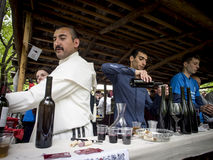 Young Wine Festival in Tbilisi Stock Photos