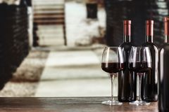 Young wine in glasses. Against the background of the cellar. in the cellar product is located on the shelves along the walls royalty free stock photos