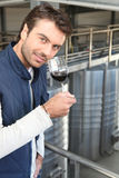 Young wine producer Royalty Free Stock Images