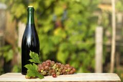 Young wine on a table. Bunch of muscat grapes on a background of blurry outlines bottle and garden royalty free stock images