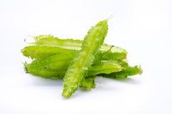 Young Winged Beans ;Psophocarpus tetragonolobus Linn Stock Photos