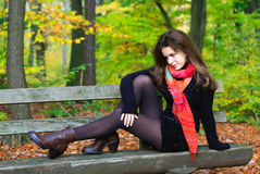 Young woman. Portrait of young woman in autumn park Stock Images