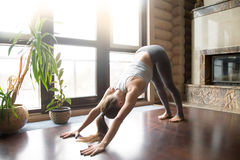 Young woman in adho mukha svanasana pose, home interior backgrou. Young woman practicing yoga, standing in Downward facing dog exercise, adho mukha svanasana Stock Images