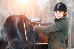 Young woman adjusting stirrups before riding horse. Young woman adjusting stirrups and saddle before riding her bay horse Royalty Free Stock Photos