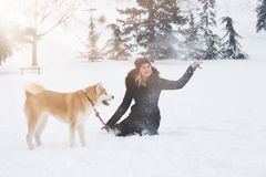 Young woman with akita dog pet in park on snowy day. Winter and royalty free stock photography