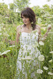 Young Woman Amoungst Tall Wild Flowers Royalty Free Stock Photography